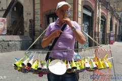 014_Mario-Cavaliere-partecipante-MFN-2017-tema-VOLTI