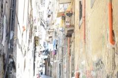 099_Roseane-Firmino-Dos-Santos-partecipante-MFN-2017-tema-VOLTI